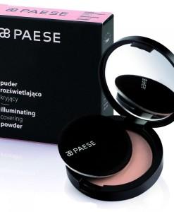 Компактная пудра со светоотражающими частицами PAESE